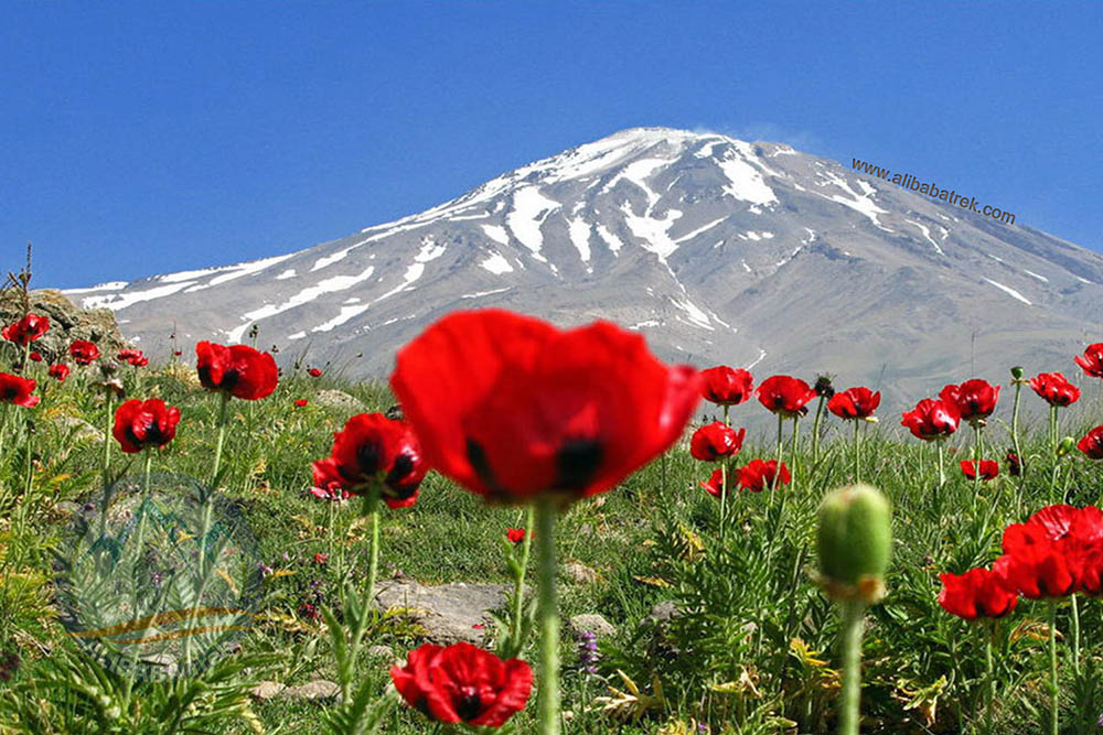 Mount Damavand from Basecamp