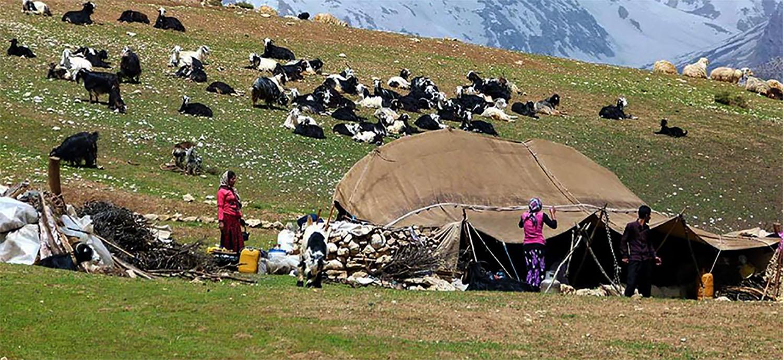 Iran's Nomadic Lifestyle persian nomad
