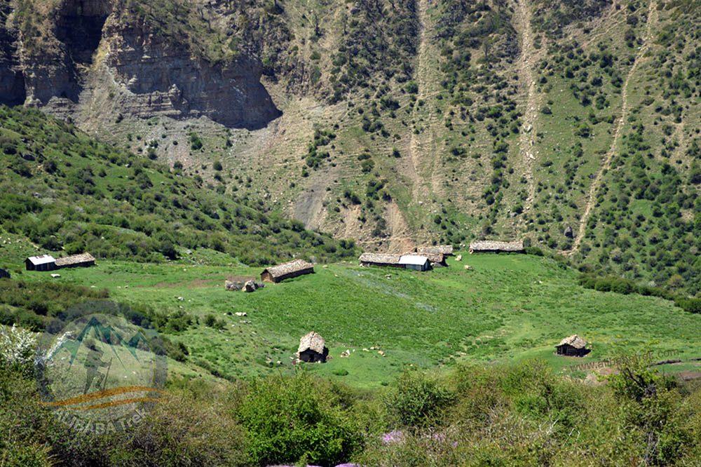 Alibabatrek Iran travel visit iran iran tour Iran forest Iran jungles Iran northern jungles Caspian sea tour Iran nature tour Alimastan jungle tour Alimastan tour