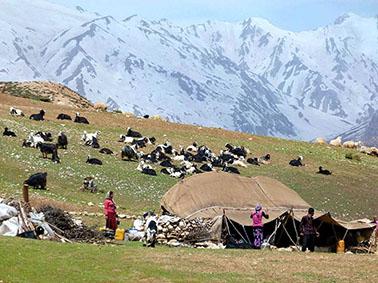 alibabatrek iran travel visit iran tour iran nomad
