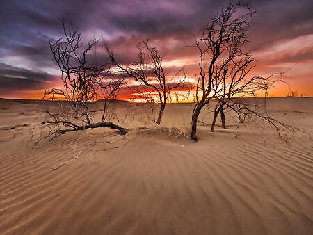 Alibabatrek-Iran-Travel-visit-iran-tour-Iran-desert-travel-Desert-iran-reisen-Iran-desert-tour-caravanserai-Iran-kalouts-Iran-off-the-beaten-track-Safari-iran-kashan-desert-tour1