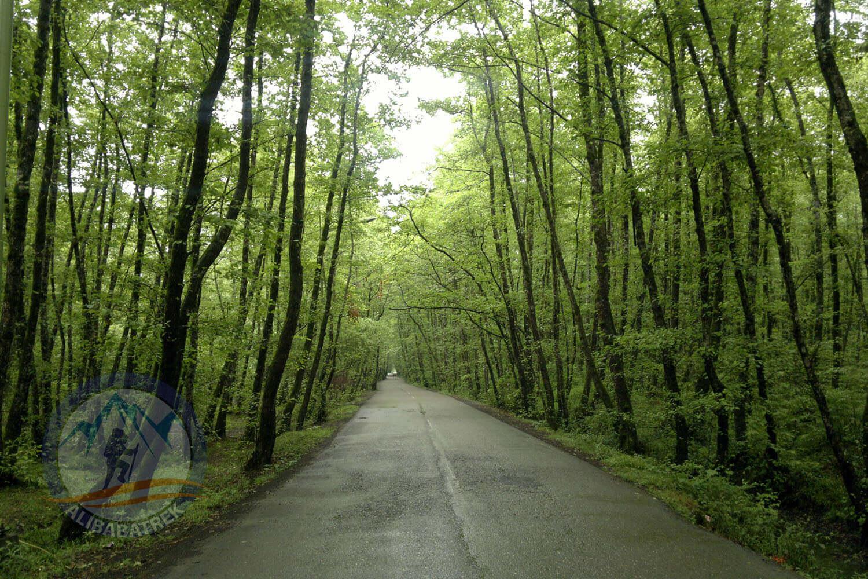 Alibabatrek iran tour Iran journey Tour to Iran in 3 weeks Explore iran gisoom jungle