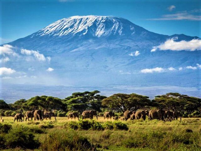 Mt Kilimanjaronm alibabatrek Volcanic Seven Summits Conquest Iran blog