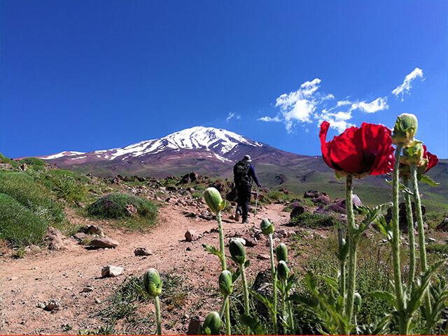 alibabatrek Volcanic Seven Summits Conquest Damavand trek iran blog -Iran-Tour