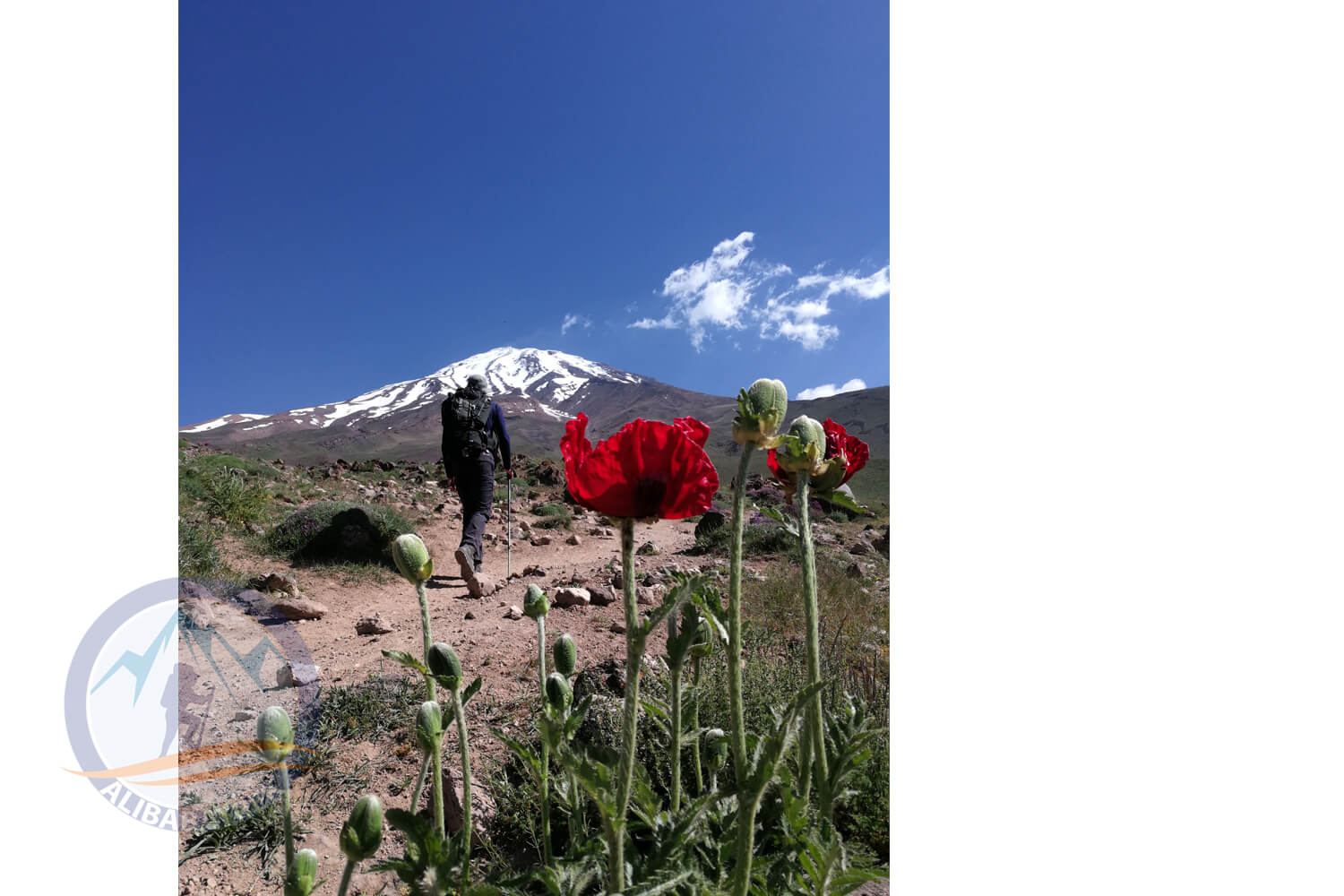 Alibabatrek damavand tour alamkuh trekking tour iran mountains tour damavand summit