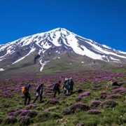 alibabatrek Damavand Elevation Damavand tour iran blog -Iran-Tour trekking