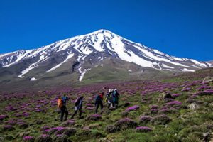 Damavand Elevation