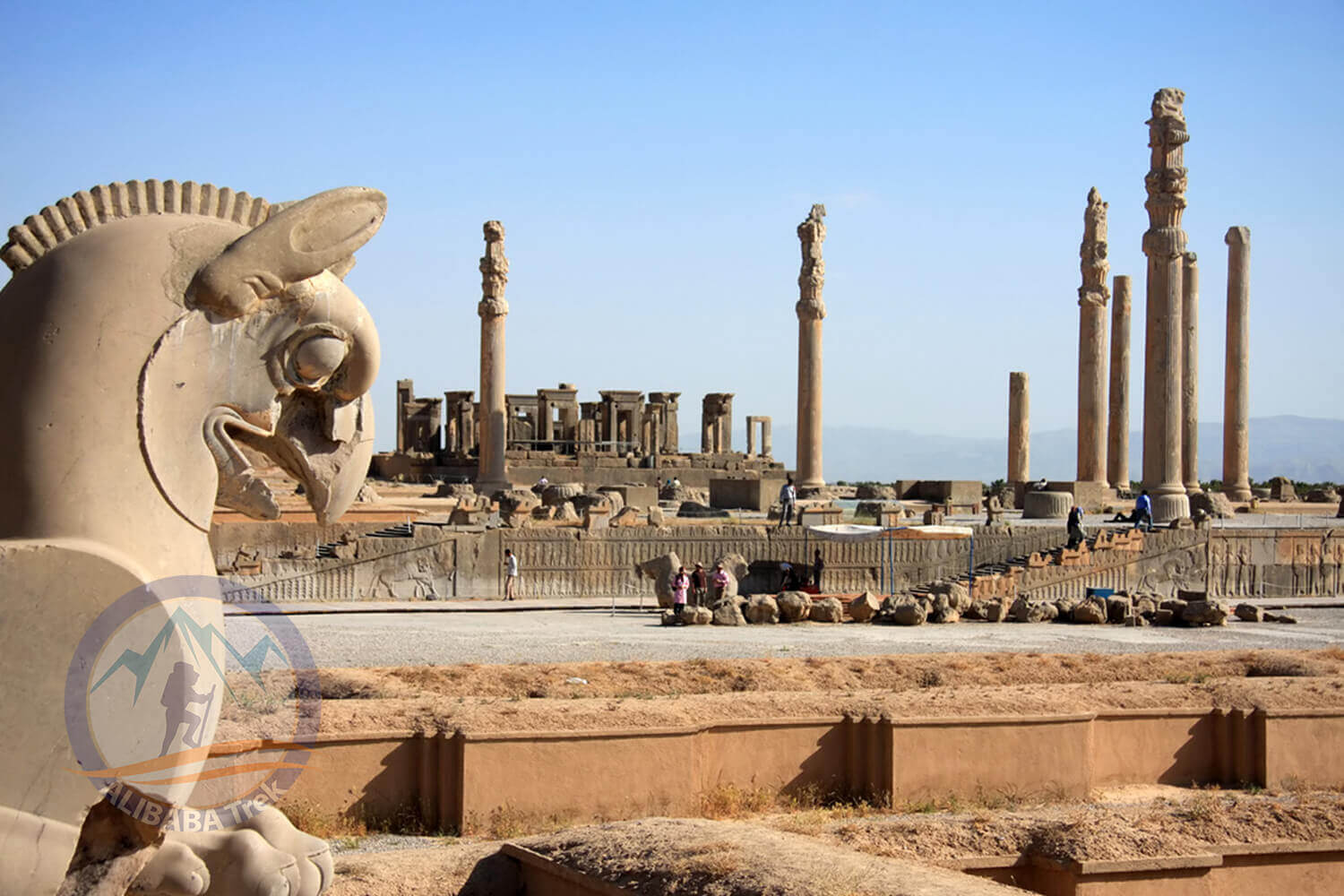 Alibabatrek iran deserts and culture tour Persepolis