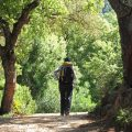 Alejandro Z, testimonilas of iran tour from Spain traveler