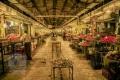The Old Bazaar of Bushehr