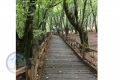 Alangdareh Park