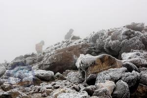 Frozen rocks on the way to summit at 5100m!